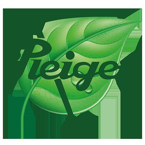 Pleiger Logo